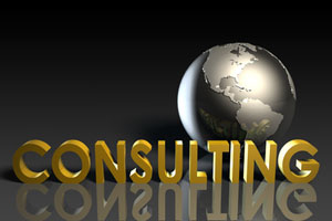 Manufacturing Consulting and Logistics Services